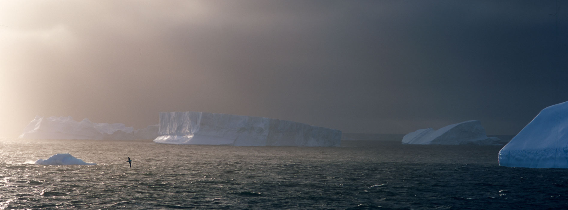 orkney10a.jpg