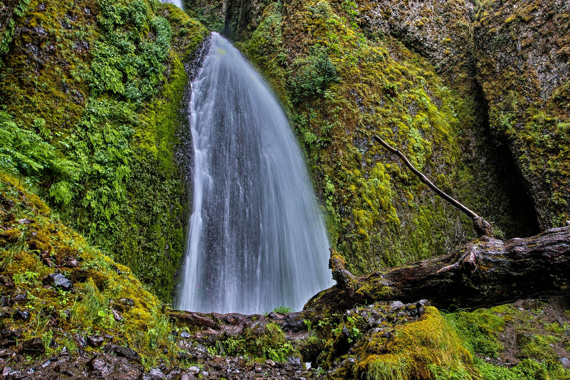 Washington_Oregon_SD-7907.jpg