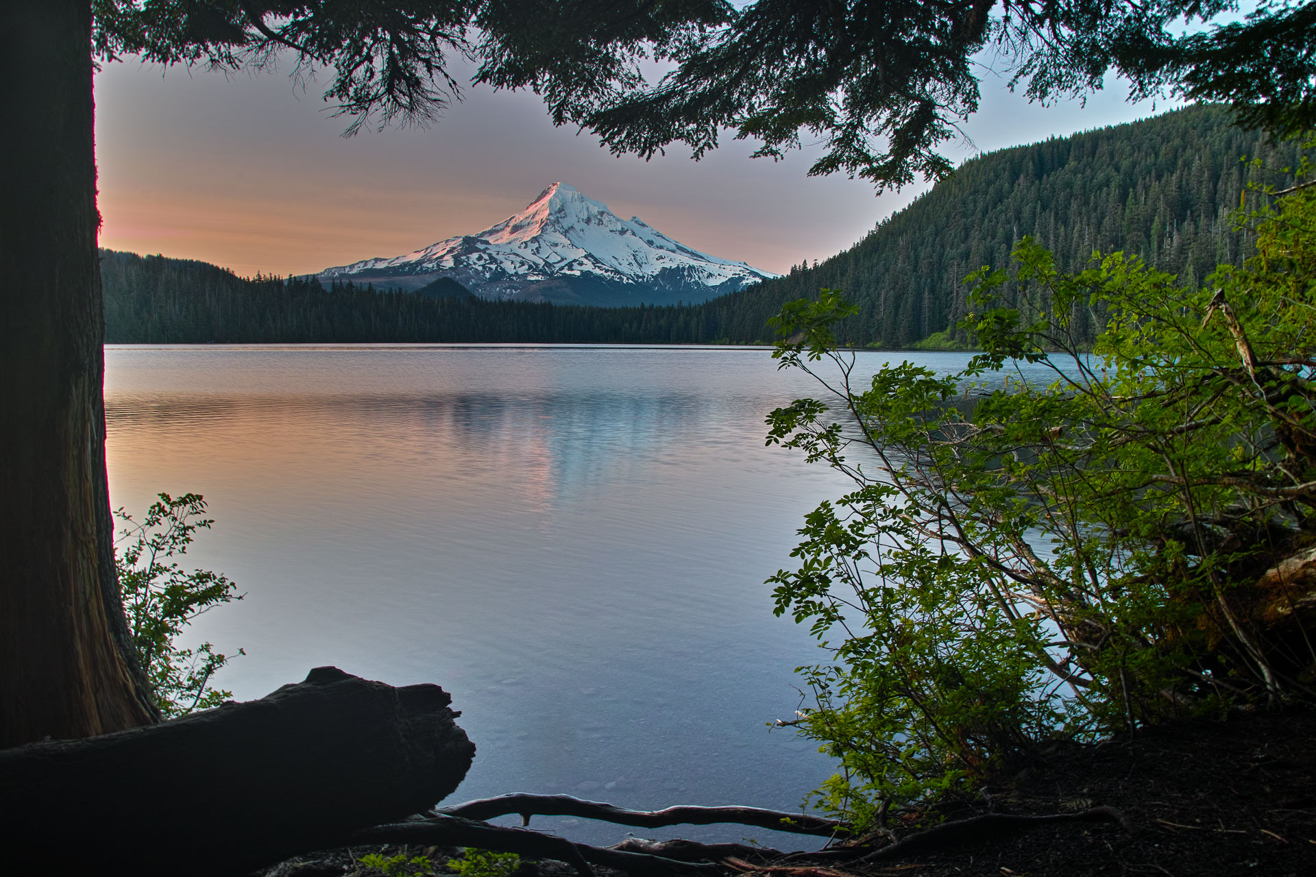 Washington_Oregon_SD-8205.jpg