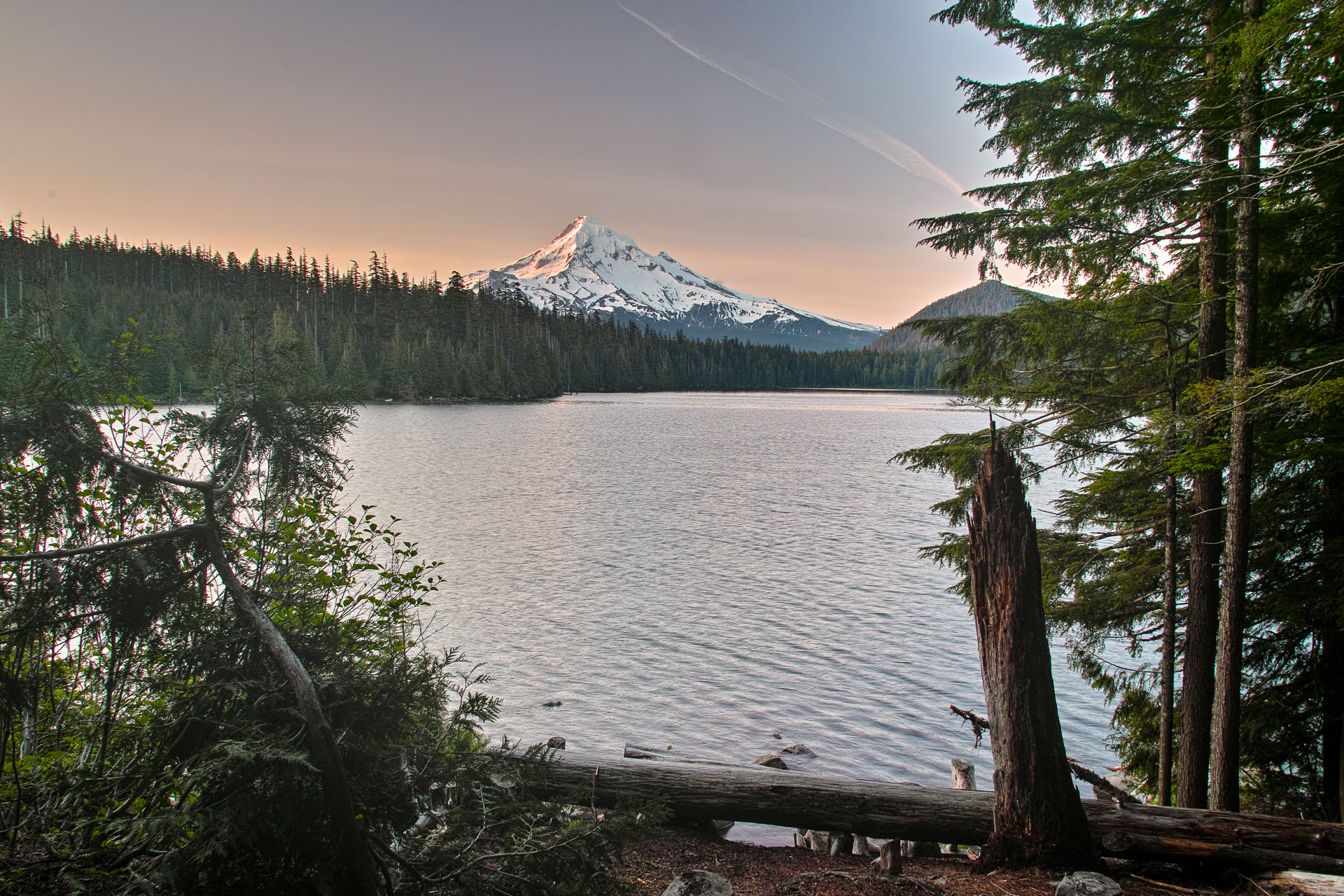 Washington_Oregon_SD-8211.jpg