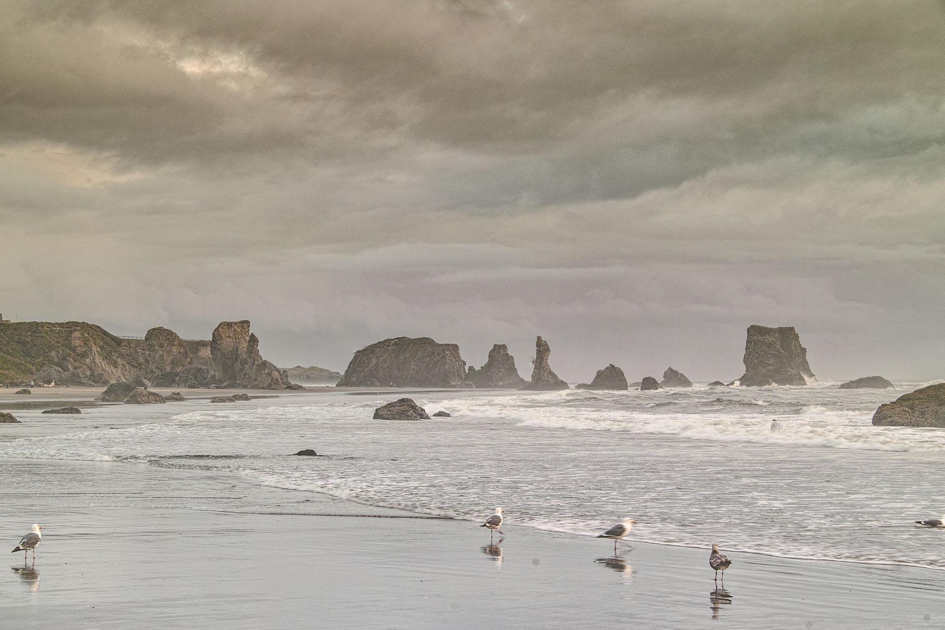 Washington_Oregon_SD-8491.jpg