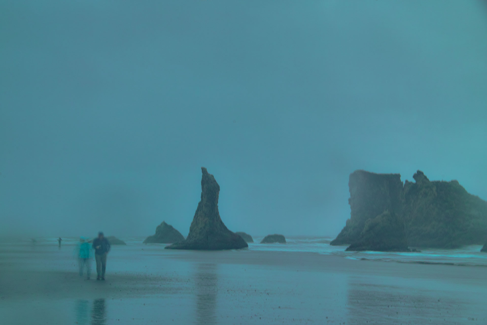 Washington_Oregon_SD-8543.jpg