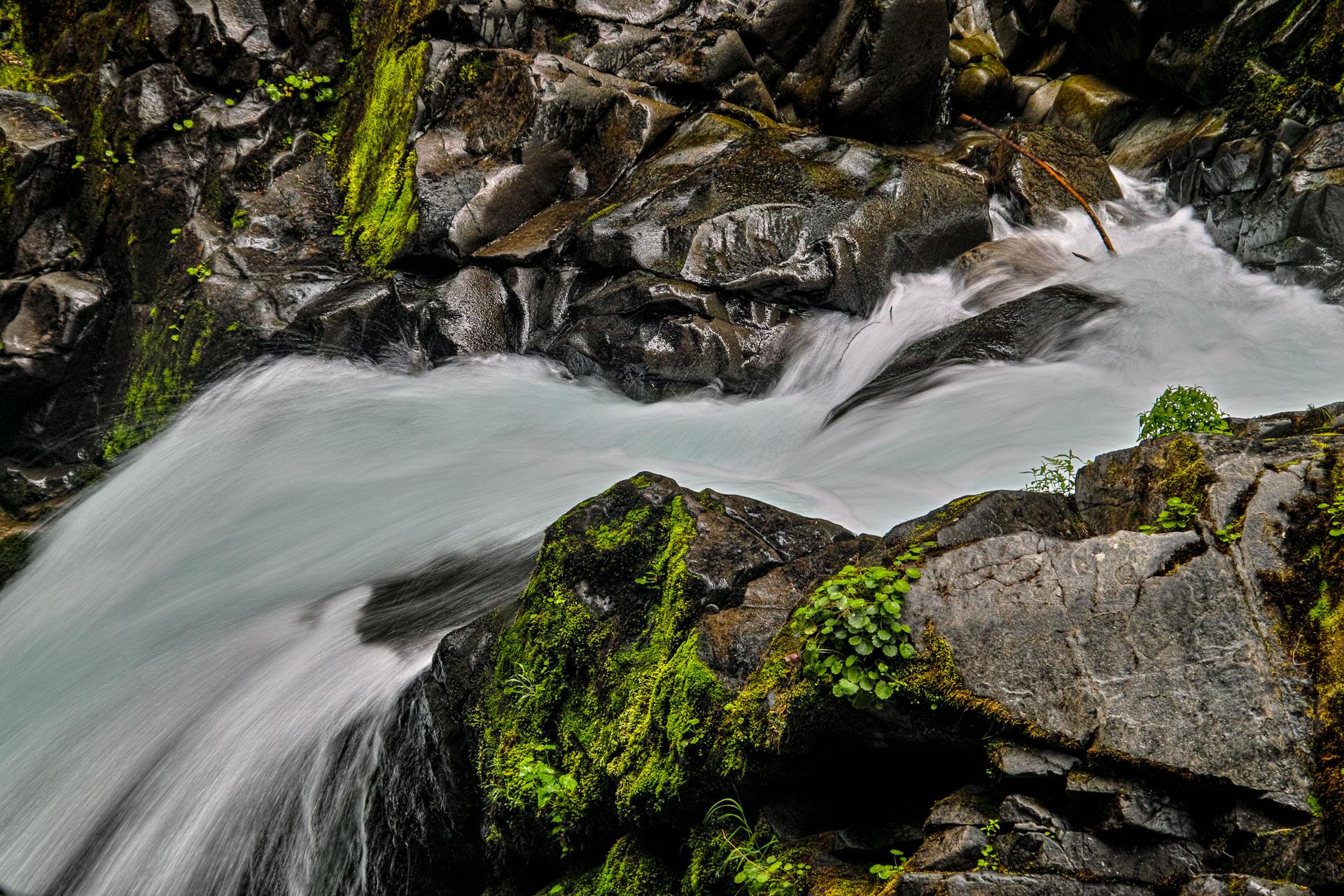 Washington_Oregon_SD-8790.jpg